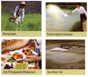 pertanian-makanan4.jpg