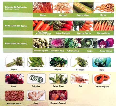 kandungan greenfield organik melilea